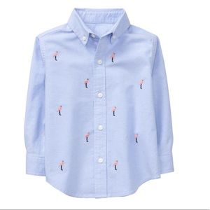 New Janie and Jack Flamingo Oxford Button down 4